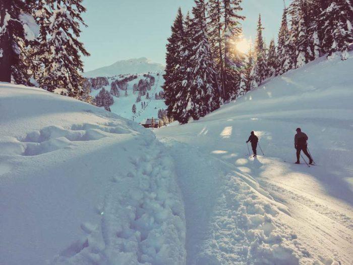 Kilka powodów, dla których warto nauczyć się jeździć na nartach